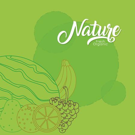 Nature fruits cartoon vector illustration graphic design Illustration
