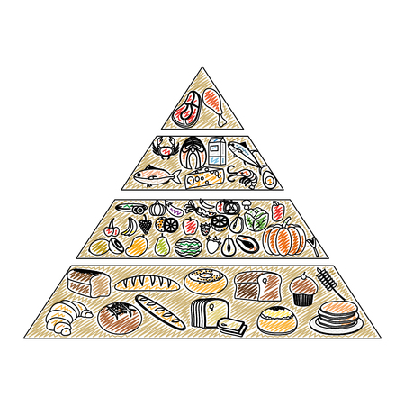 doodle nutritional food pyramid diet products