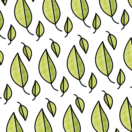 doodle natural leaf tropical botany background vector illustration 矢量图像