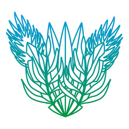 degraded line natural plants tropical leaves design vector illustration Illustration
