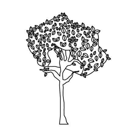 line exotic tree botanic stalk nature vector illustration