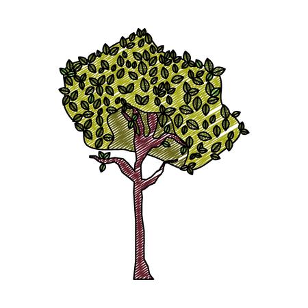 doodle exotic tree botanic stalk nature vector illustration
