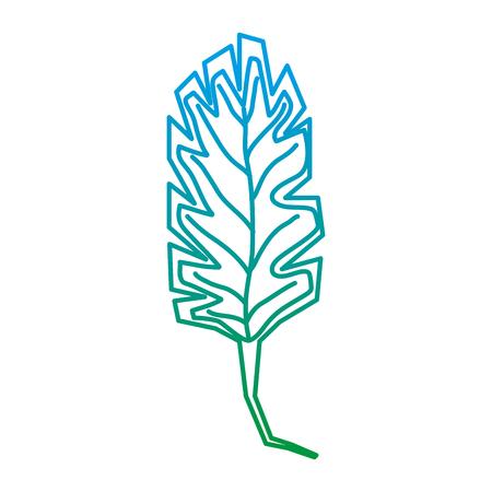 degraded line nature spring leaf exotic design vector illustration