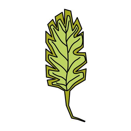 color nature spring leaf exotic design vector illustration