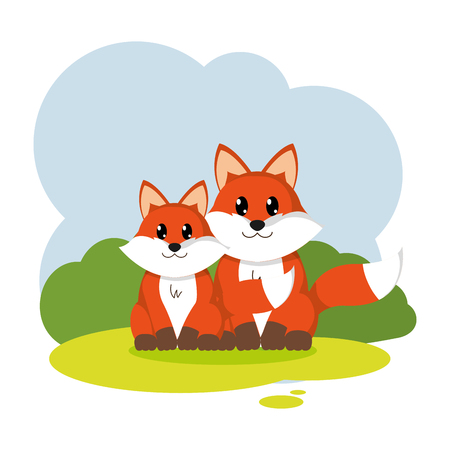 couple fox wild animal in the landscape