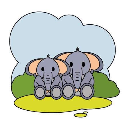 color couple elephant wild animal in the landscape