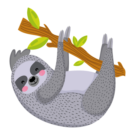 nice sloth wild animal in the branch leaves vector illustration
