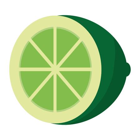 delicious slice lemon organic fruit Vettoriali