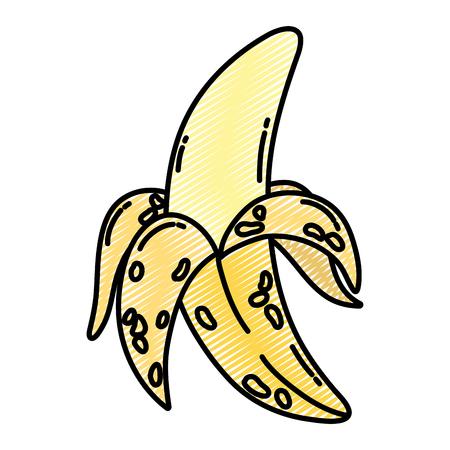 doodle delicious banana fruit organic nutrition vector illustration Illustration