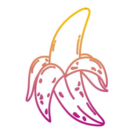 degraded line delicious banana fruit organic nutrition vector illustration Vettoriali