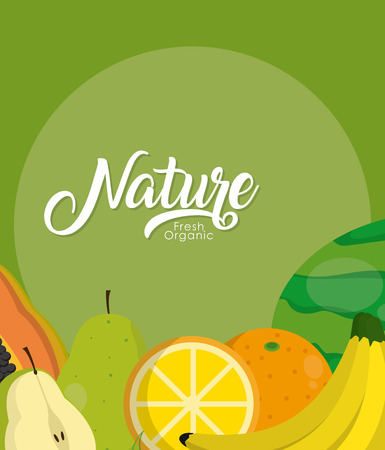Delicious nature fruits over colorful background vector illustration graphic design 向量圖像