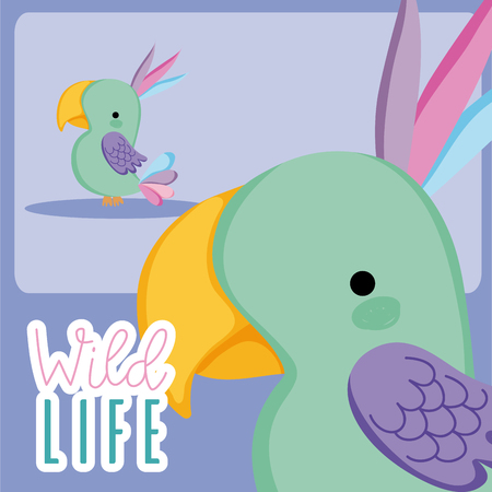 Bird wildlife animal cute cartoon vector illustration graphic design