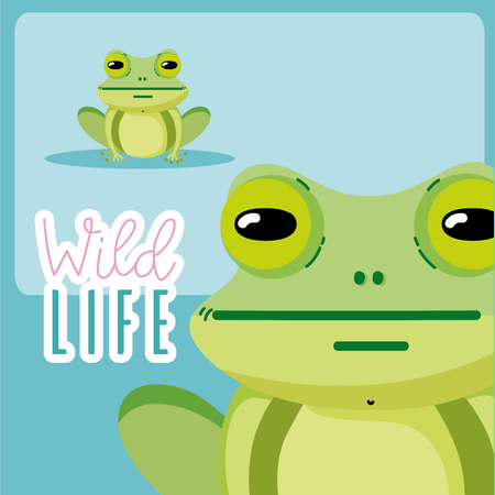 Frog wildlife animal cute cartoon vector illustration graphic design