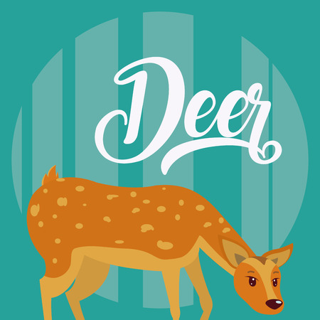 Deer Cute animal cartoon over colorful background vector illustration graphic design