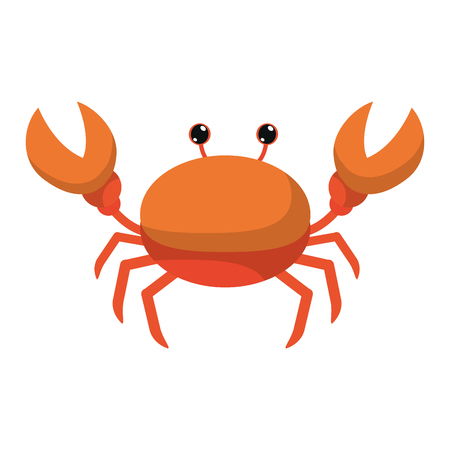 nice crab tropical sea animal vector illustration