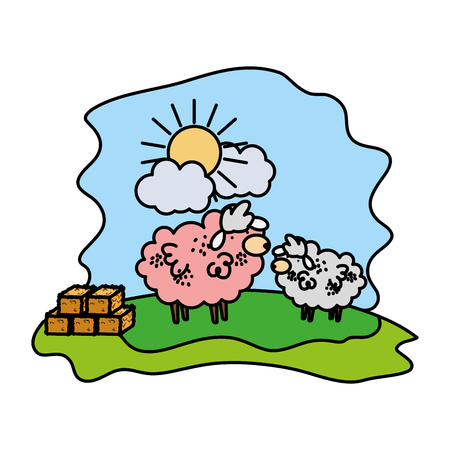 color sheeps family animal with straw bale vector illustration