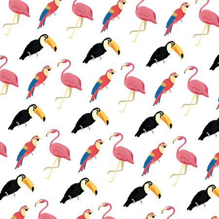 tropical flamish with pelican and parrot background Illustration