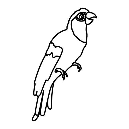 line tropical parrot bird animal style Ilustração