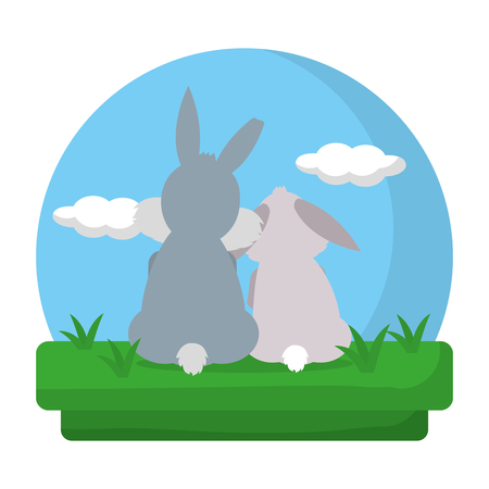 cute couple rabbit animal in the landscape