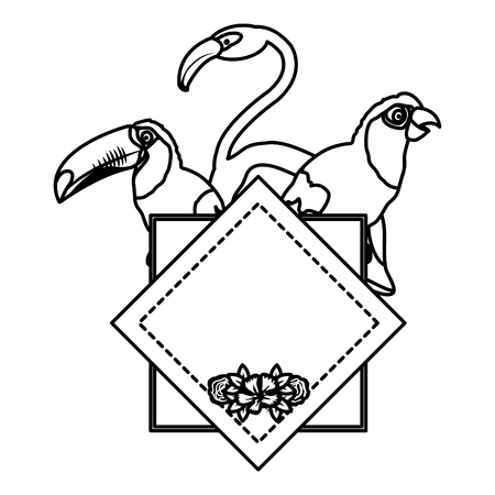 line tropical emblem pelican with parrot and flemish birds