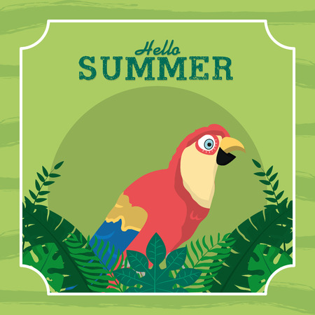 Hello summer card with parrot exotic bird vector illustration graphic design