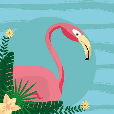 Flamenco exotic bird decorative card vector illustration graphic design