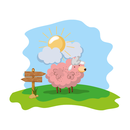 sheep farm animal with wood notices Stock Photo