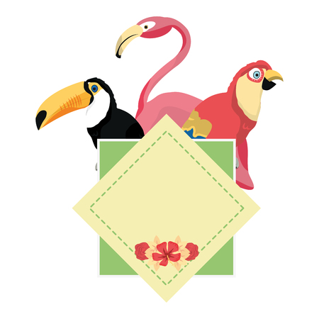 color tropical emblem pelican with parrot and flemish birds