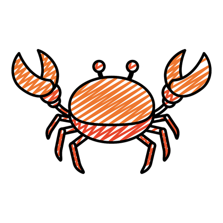 doodle nice crab tropical sea animal