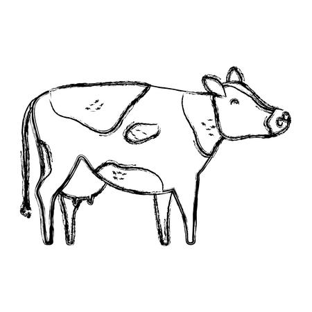 grunge cute cow farm animal icon vector illustration