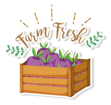 Farm fresh eggplants inside wooden box cartoons vector illustration graphic design