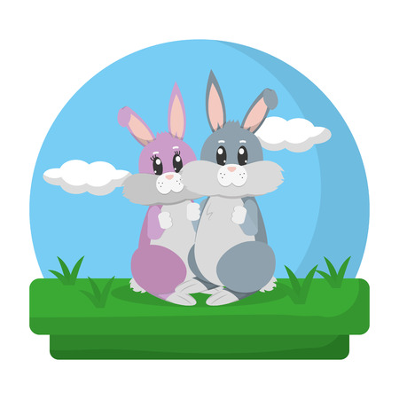 cute couple rabbit standing in the landscape 스톡 콘텐츠