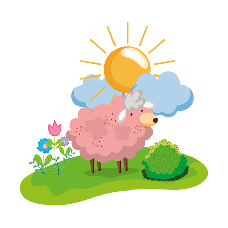 nice sheep animal walking farm