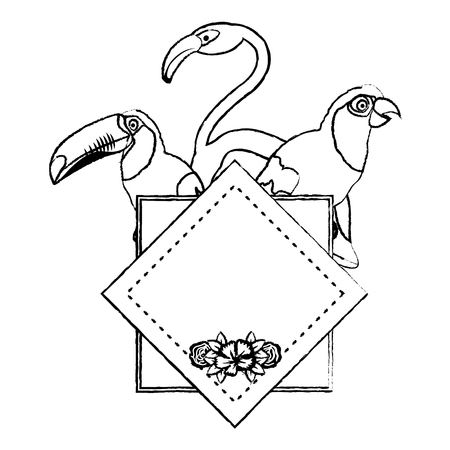 grunge tropical emblem pelican with parrot and flemish birds