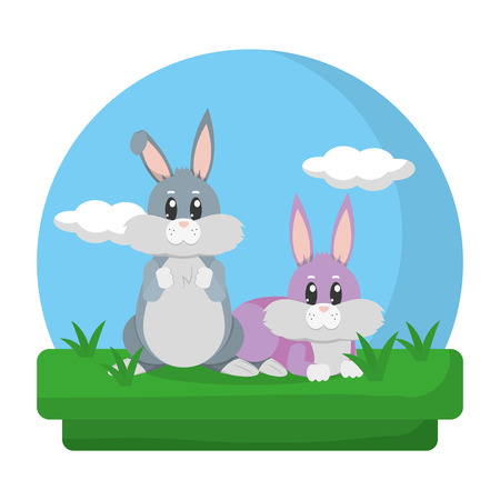cute rabbits friends animals in the landscape 스톡 콘텐츠