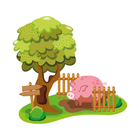 pig farm animal in the swamp with wood grillage vector illustration Illustration