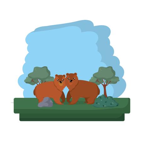 couple bear wild animal reserve vector illustration