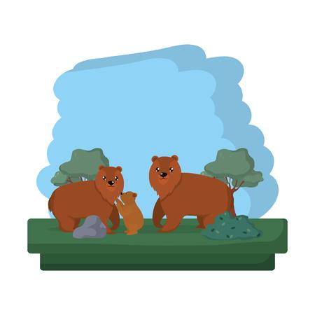 family bear wild animal reserve vector illustration Illustration