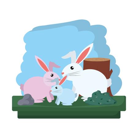 family rabbit wild animal reserve