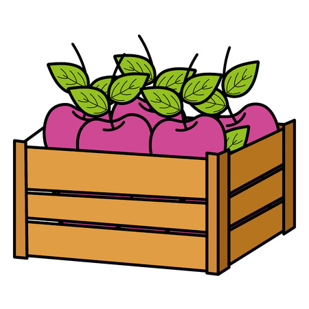 color delicious apple fruit inside wood basket vector illustration Vettoriali