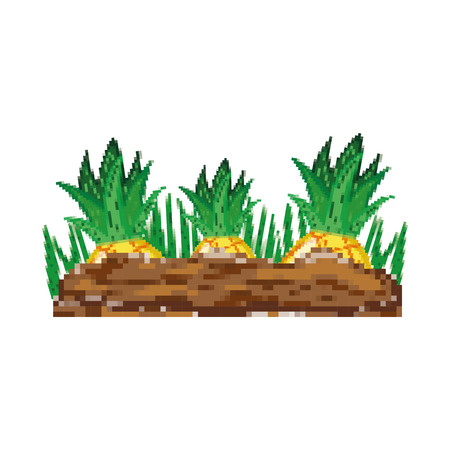 pixelated healthy pineapple fruit cultivated vector illustration Illustration