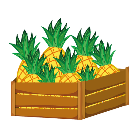 delicious pineapples fruits inside wood basket vector illustration