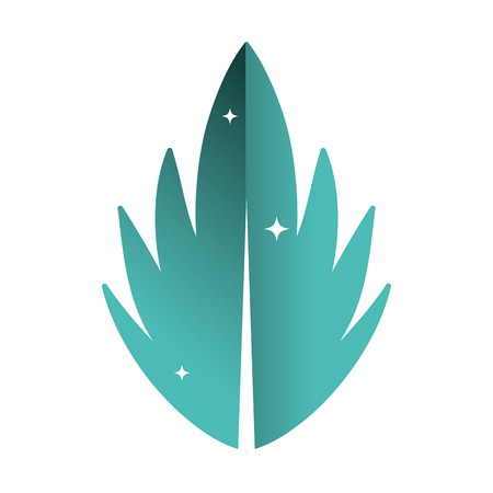 beauty exotic leaf with nature style vector illustration Illustration