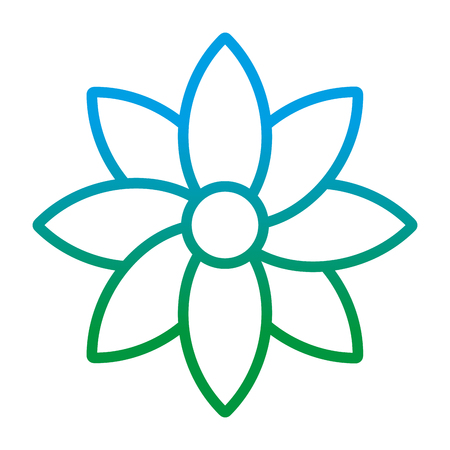 degraded line beauty flower with natural petals style vector illustration