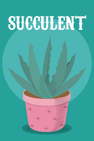Succulent plant cartoon Illustration