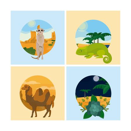 Set of desert animals Illustration