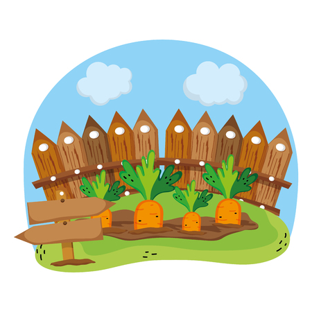 wood grillage and carrots farm cultivated vector illustration Vectores