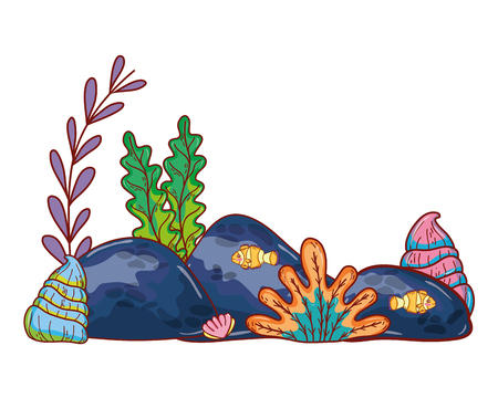 seaweed plants with oyter style and stones