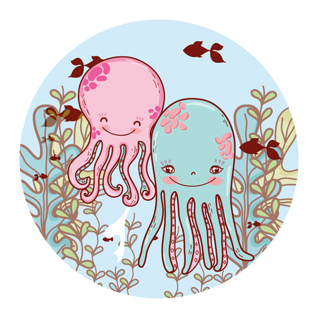 nice octopus couple with seaweed plants vector illustration