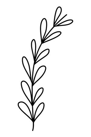 outline tropical branch plant leaves style vector illustration